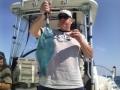 Bill_Jr_Parrot_fish